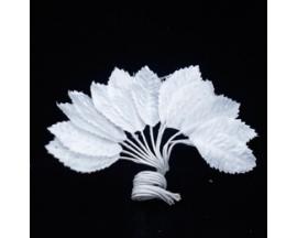 WHITE LEAF PICK